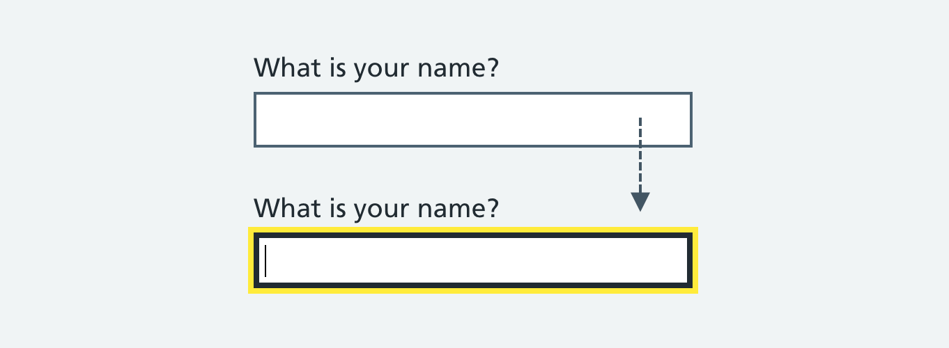 "A text input labelled ""What is your name?"". The example shows the text input both unfocused and focused."